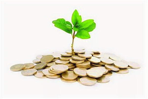 Где можно научиться инвестированию с нуля